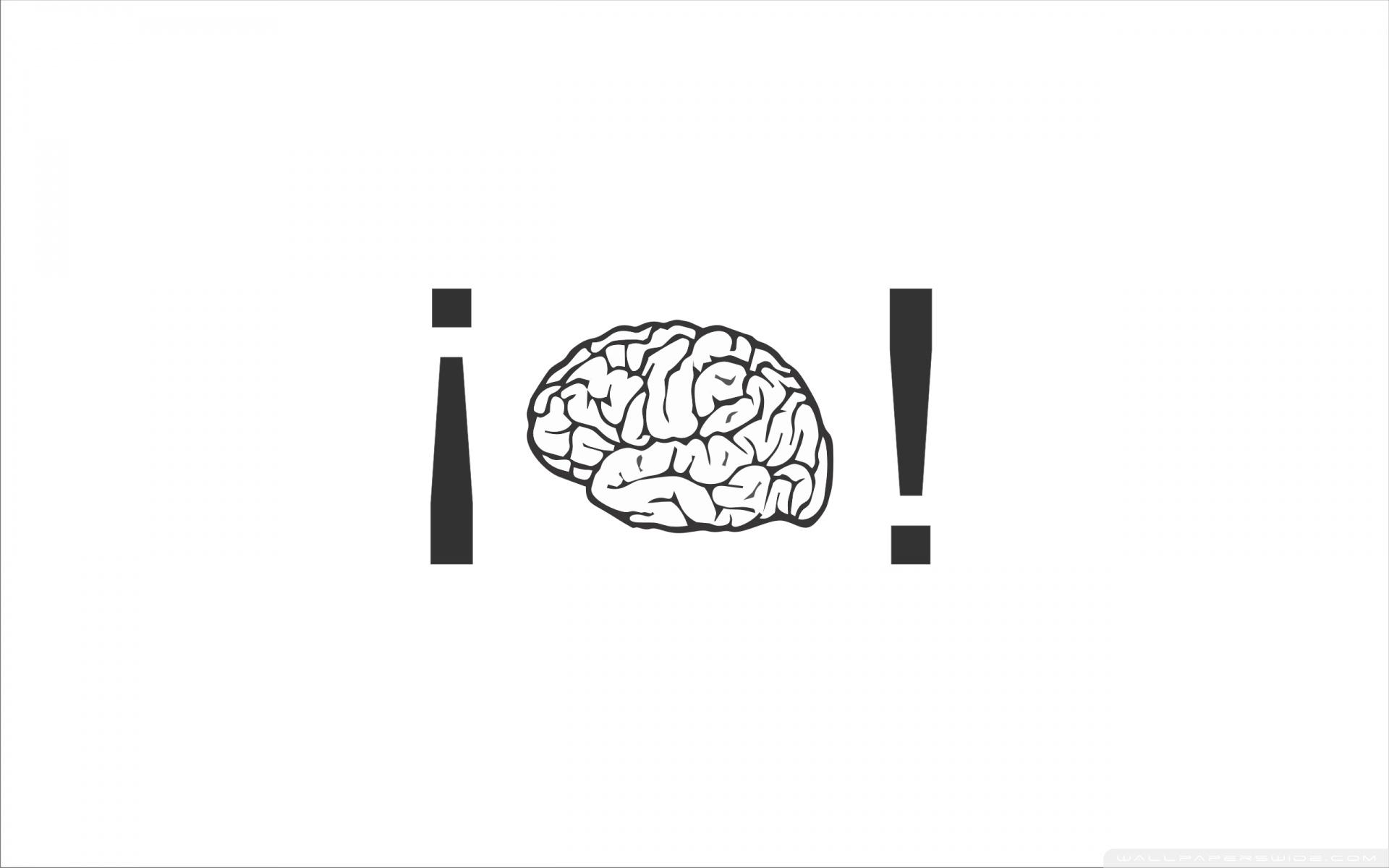 Brain 4k Hd Desktop Wallpaper For 4k Ultra Hd Tv Dual