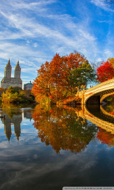 Fall Wallpaper Dual Monitor Fall Foliage In Central Park New York City 4k Hd Desktop