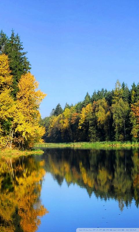 4k Fall Mountain Wallpaper Fall Trees Reflection 4k Hd Desktop Wallpaper For 4k Ultra