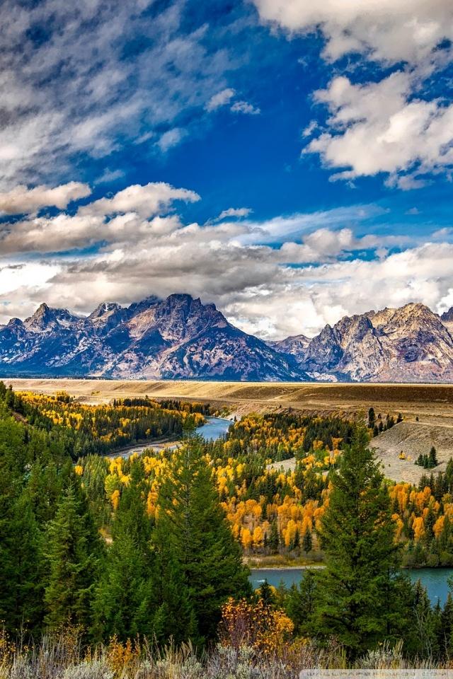 Fall Sunflowers Wallpaper Grand Teton National Park Autumn Ultra Hd Desktop