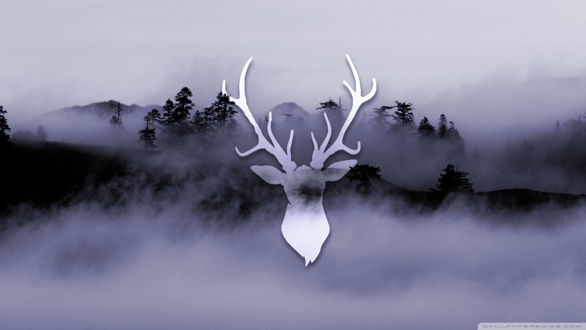 Fall Desktop Wallpaper Widescreen Misty Deer 4k Hd Desktop Wallpaper For 4k Ultra Hd Tv