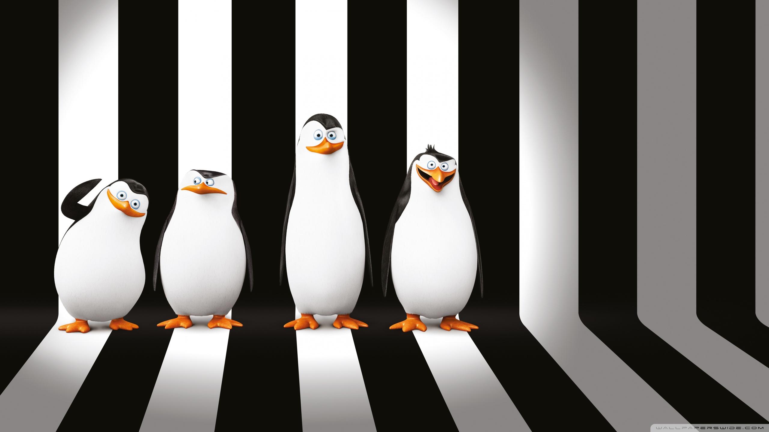 penguins of madagascar movie ❤ uhd desktop wallpaper for ultra hd