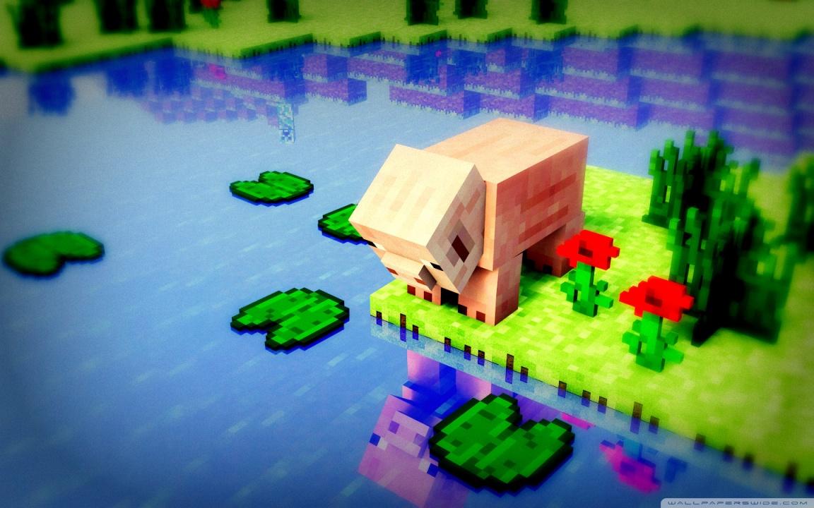 Cool Minecraft Wallpapers Hd Pig Problems 4k Hd Desktop Wallpaper For 4k Ultra Hd Tv