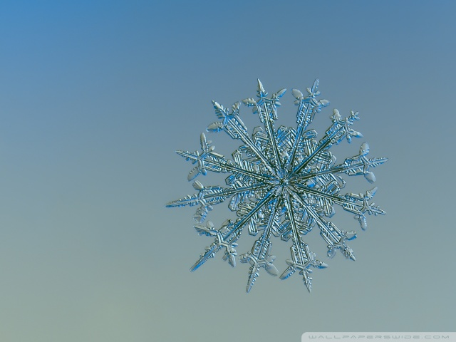 Falling Snow Wallpaper For Ipad Real Snowflake Falling Up Close 4k Hd Desktop Wallpaper