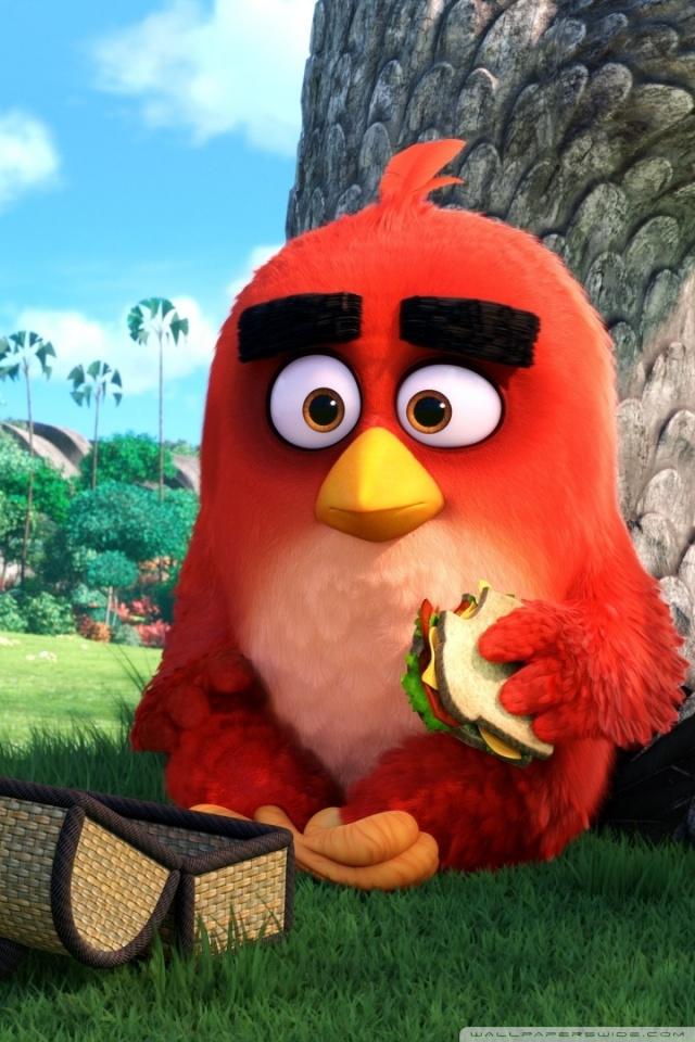 Red Angry Birds Movie 4K HD Desktop Wallpaper for 4K Ultra