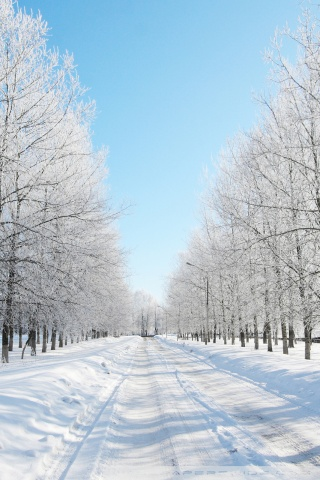 Fall Scene Desktop Wallpaper Road Covered With Snow 4k Hd Desktop Wallpaper For 4k