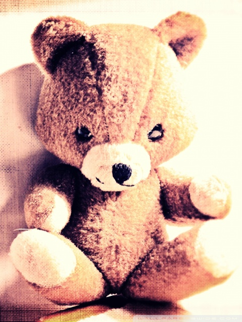 Cute Teddy Bears Wallpapers Hd Teddy Bear 4k Hd Desktop Wallpaper For Tablet