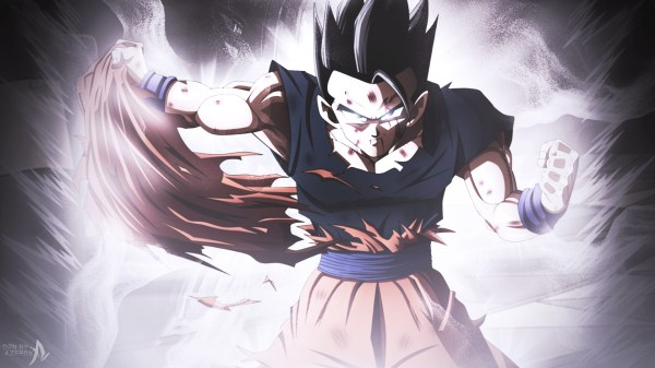 20 Ultimate Gohan Vs Goku Pictures And Ideas On Carver Museum