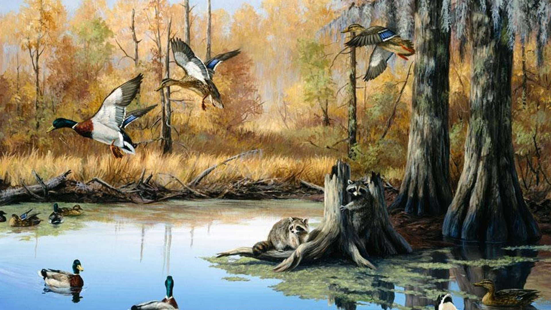 Hunting Duck Camo Wallpaper Border