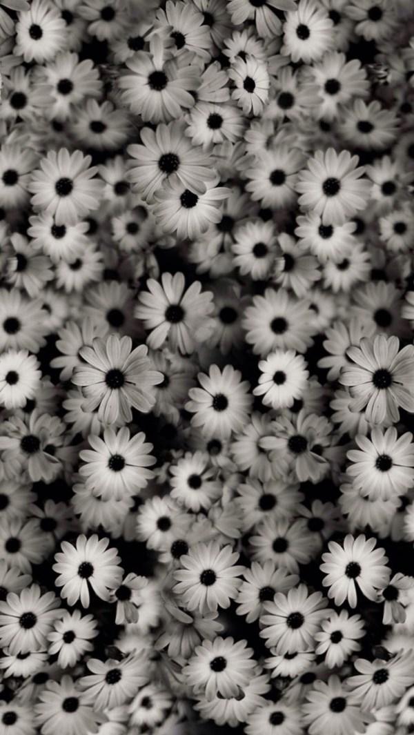 Black Floral Background Tumblr ·①