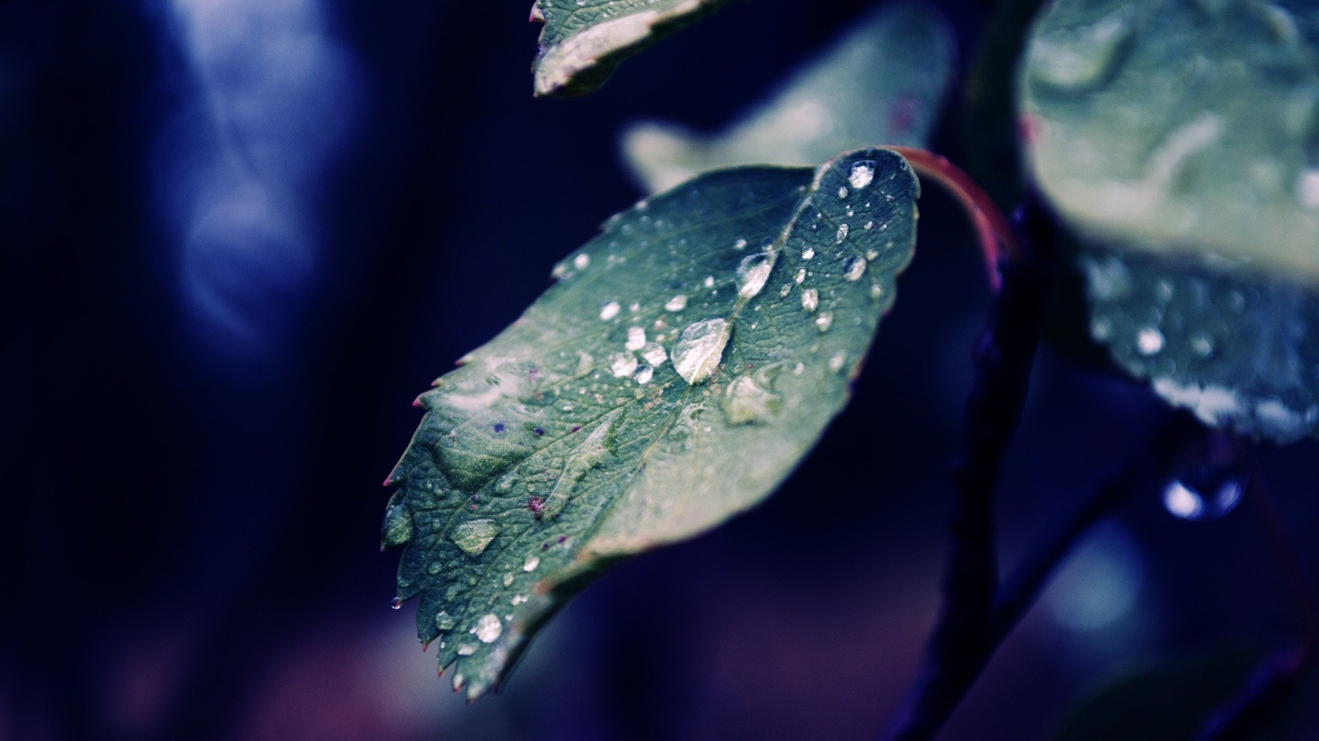 Under Armour Wallpaper Iphone X Rain Wallpaper Hd 183 ① Download Free Awesome Full Hd