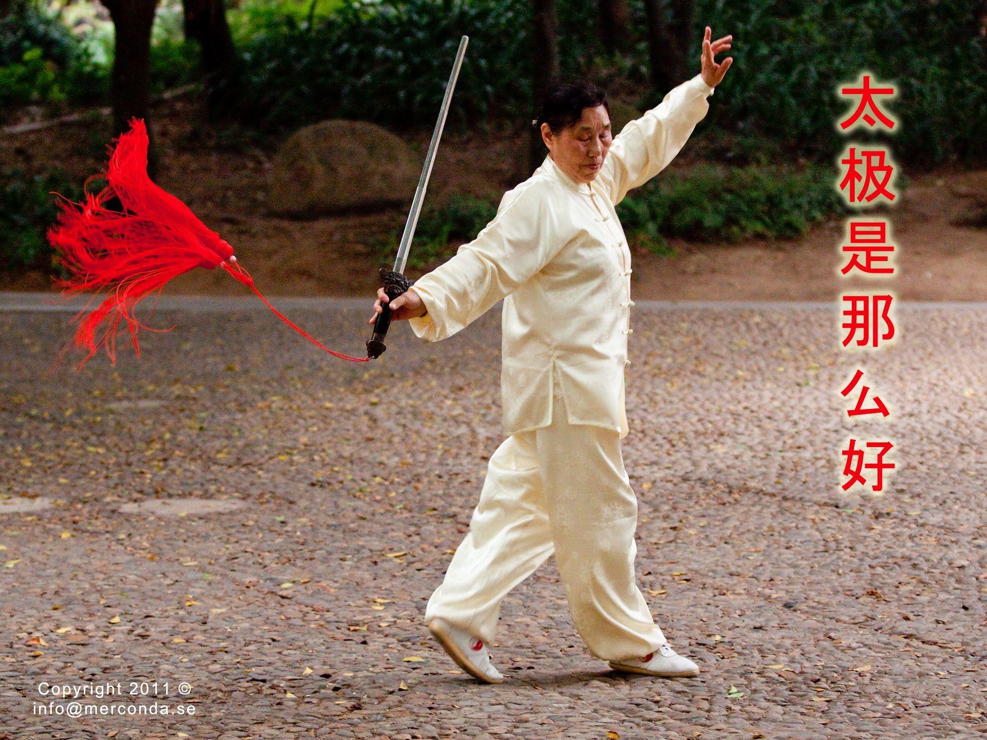 Kung Fu Panda Wallpaper Cute Tai Chi Wallpaper 183 ① Wallpapertag