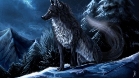 wolf anime wolves wallpapers backgrounds hd winter 1920a 1397 wallpapertag