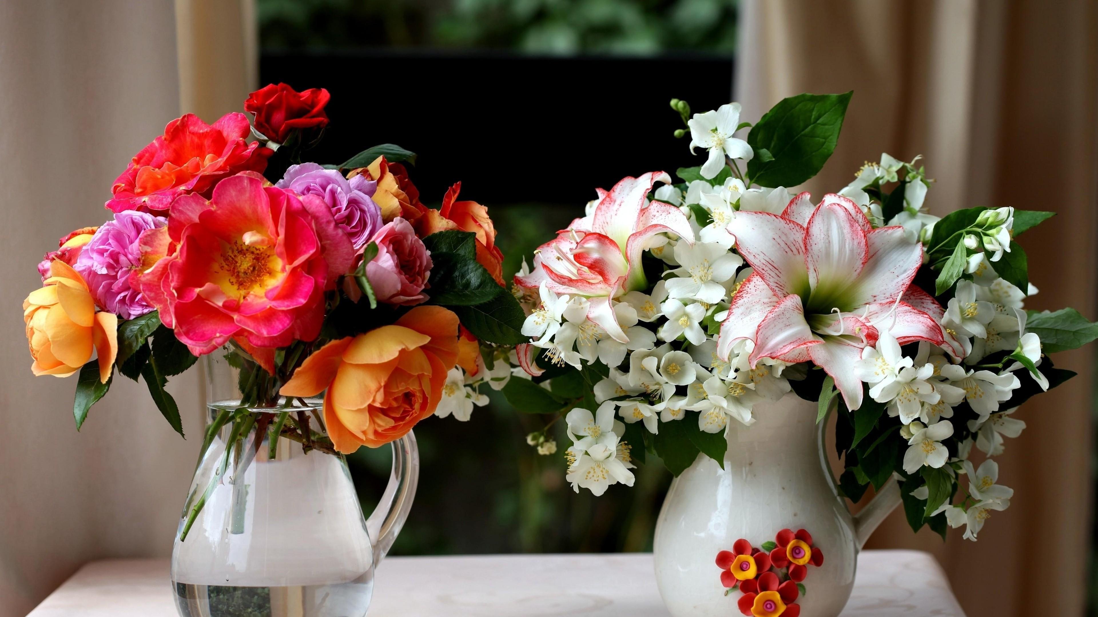 1920x1080 Fall Hd Wallpaper Jasmine Flower Wallpaper 183 ① Wallpapertag