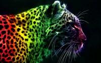 Animal Print Desktop Backgrounds