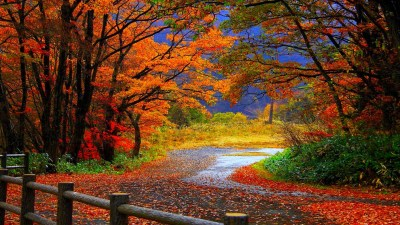 Autumn wallpaper Widescreen ·① Download free amazing High ...