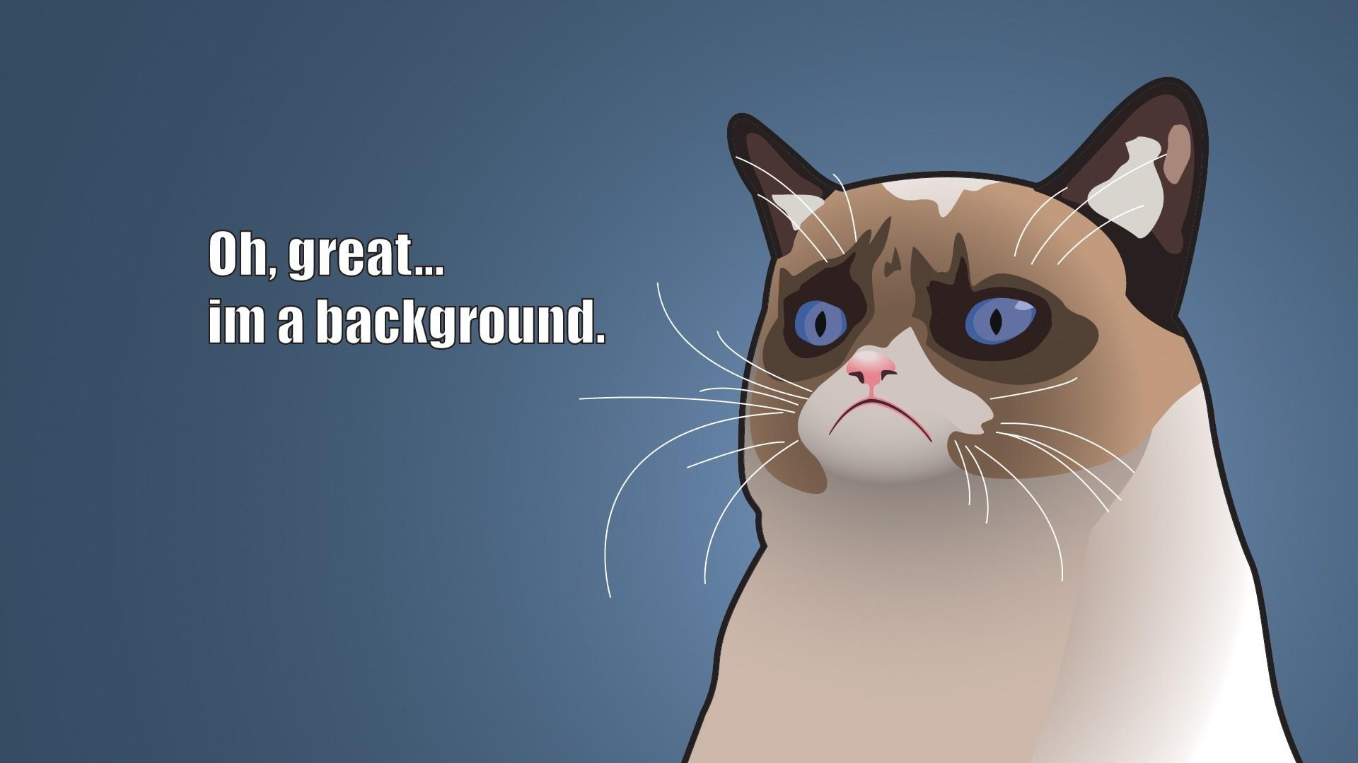 Cute Dogs Full Hd Wallpapers Warrior Cats Wallpaper Desktop 183 ① Wallpapertag