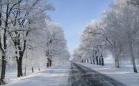 Snow Background Pictures