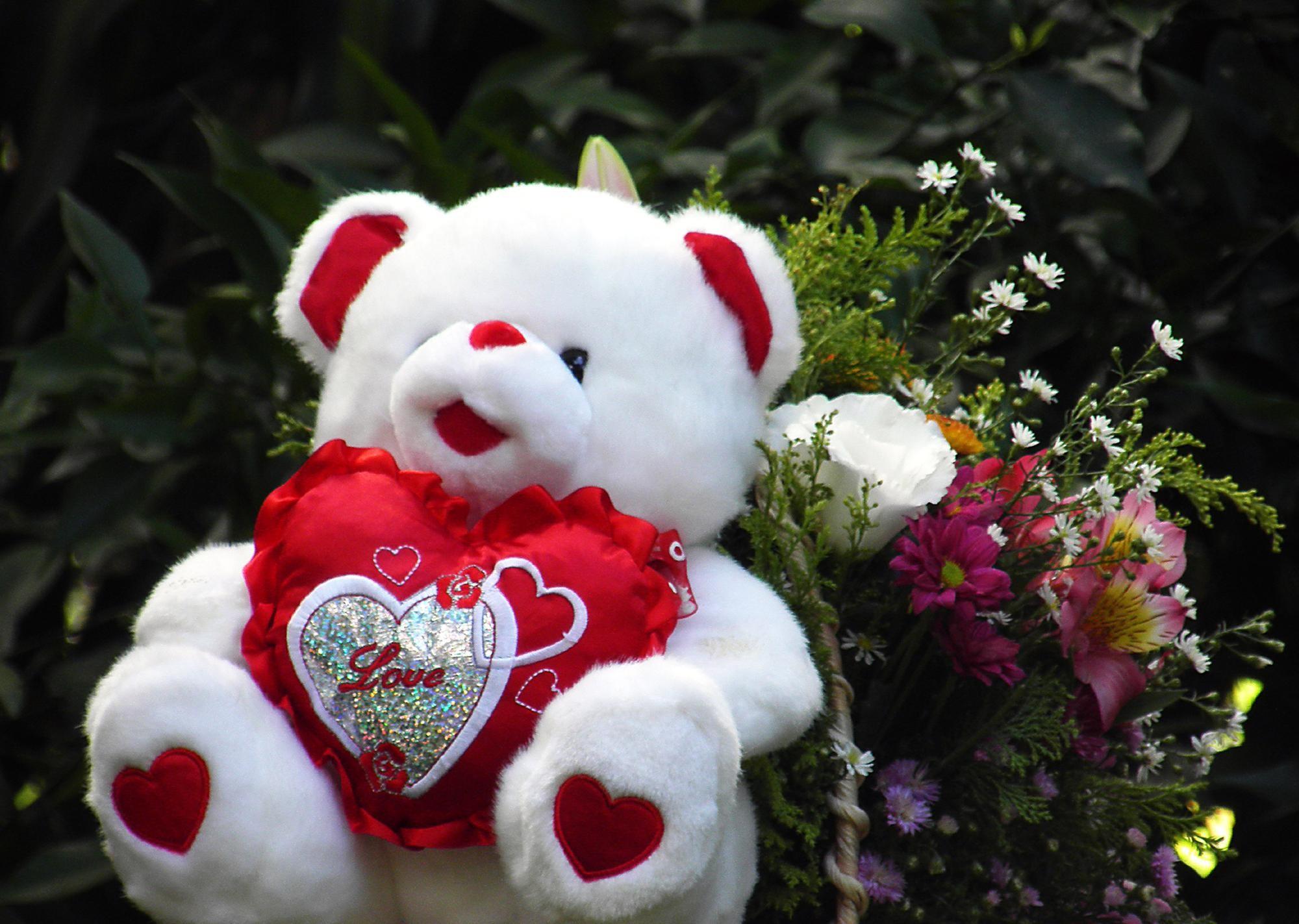 Cute Little Love Couple Hd Wallpaper Cute Teddy Bear Wallpapers 183 ① Wallpapertag