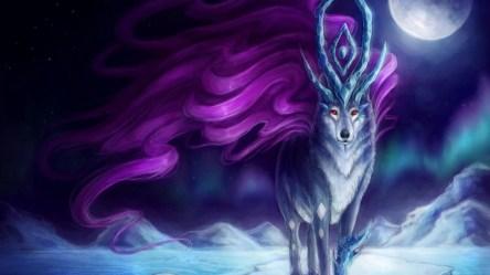 wolf anime animated animals desktop background hd polar quality wallpapertag computer