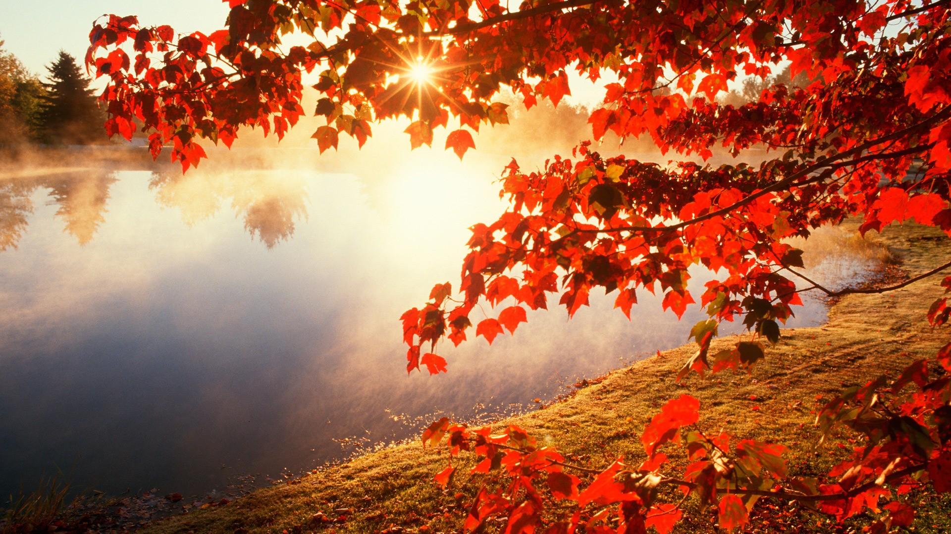 Free Desktop Wallpaper Fall Season 34 Autumn Wallpapers 183 ① Download Free Stunning Wallpapers