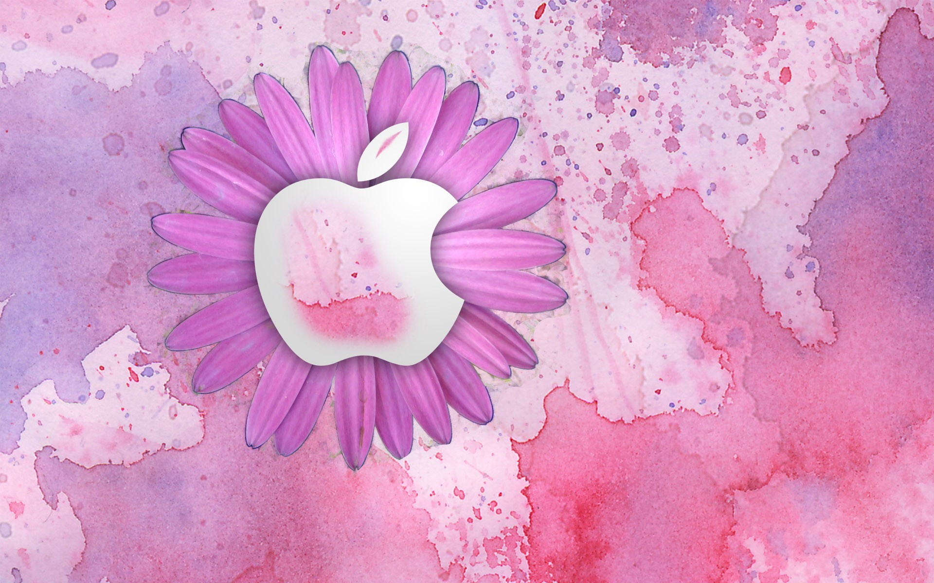 Cute Shelf Wallpaper For Ipad 47 Backgrounds For Girls 183 ① Download Free Stunning Hd