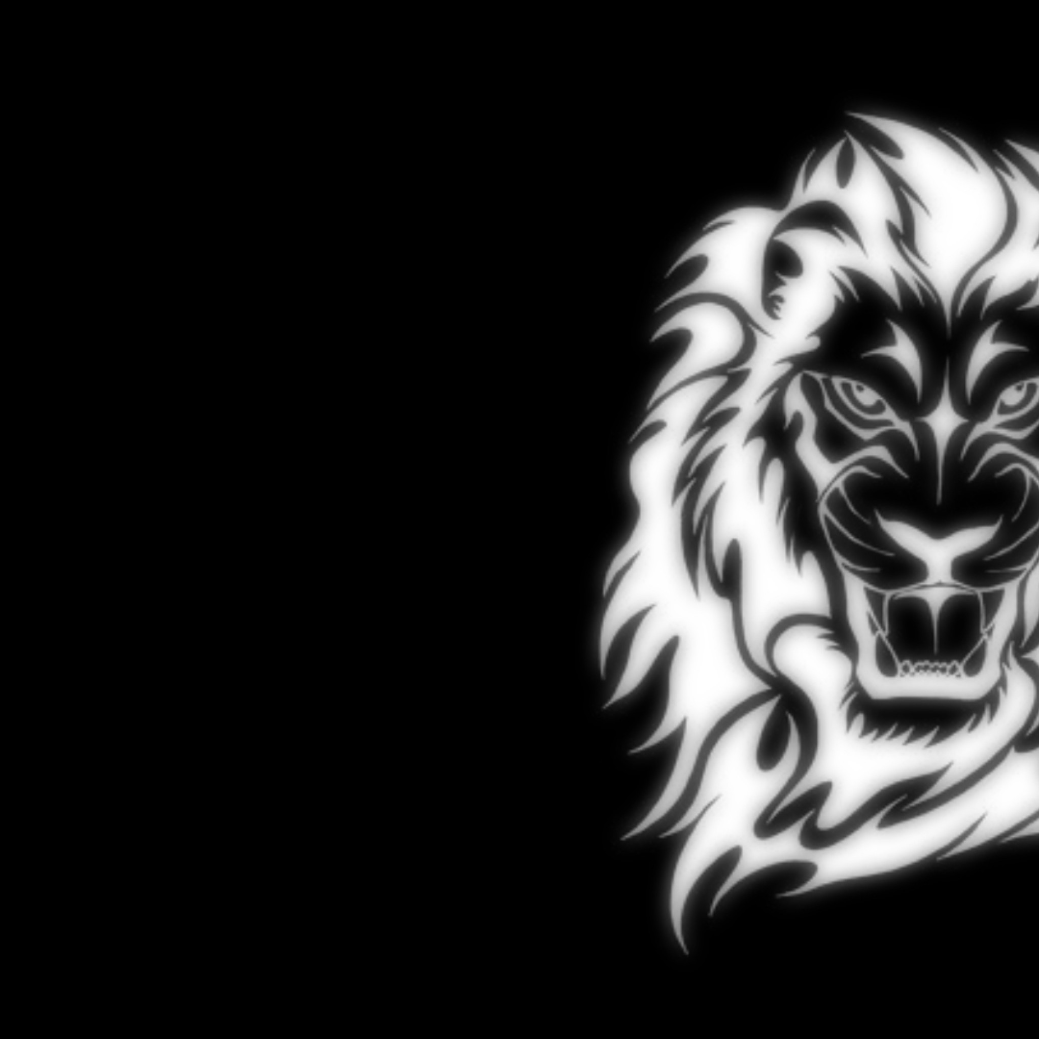 lion wallpaper hd download