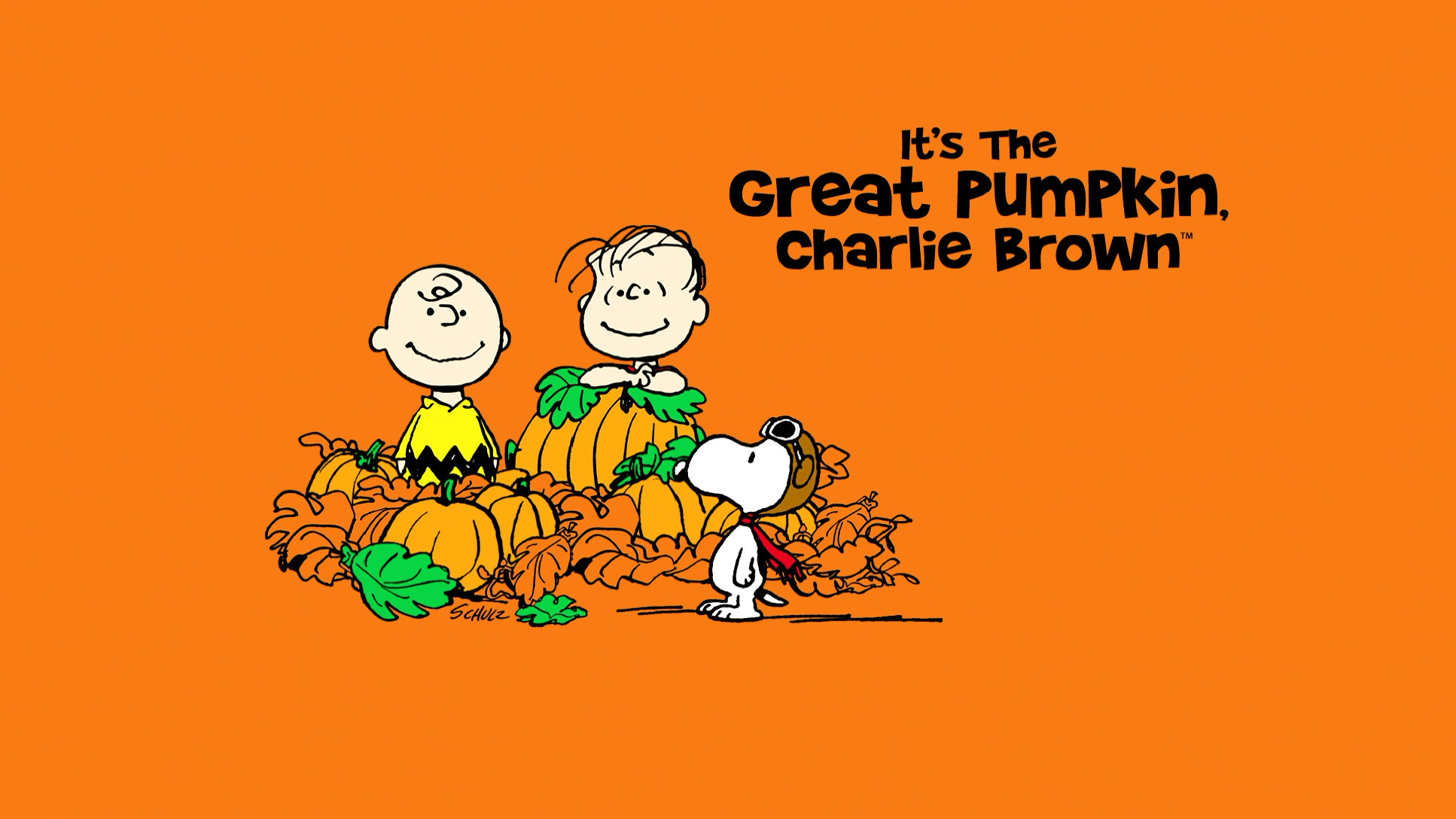 Free Snoopy Fall Wallpaper Great Pumpkin Charlie Brown Wallpaper 183 ① Wallpapertag
