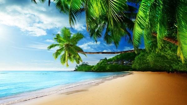 Tropical Wallpaper Desktop Wallpapertag
