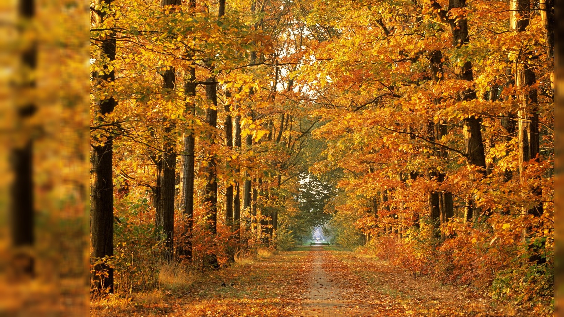 Fall Landscape Wallpapers Free November Background 183 ① Download Free Awesome High