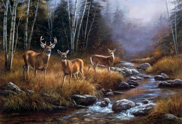 Rosemary Millette Deer Paintings