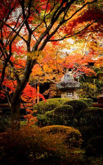 Fall Leaves Desktop Wallpaper Desktop Wallpaper Fall Scenes 183 ① Wallpapertag