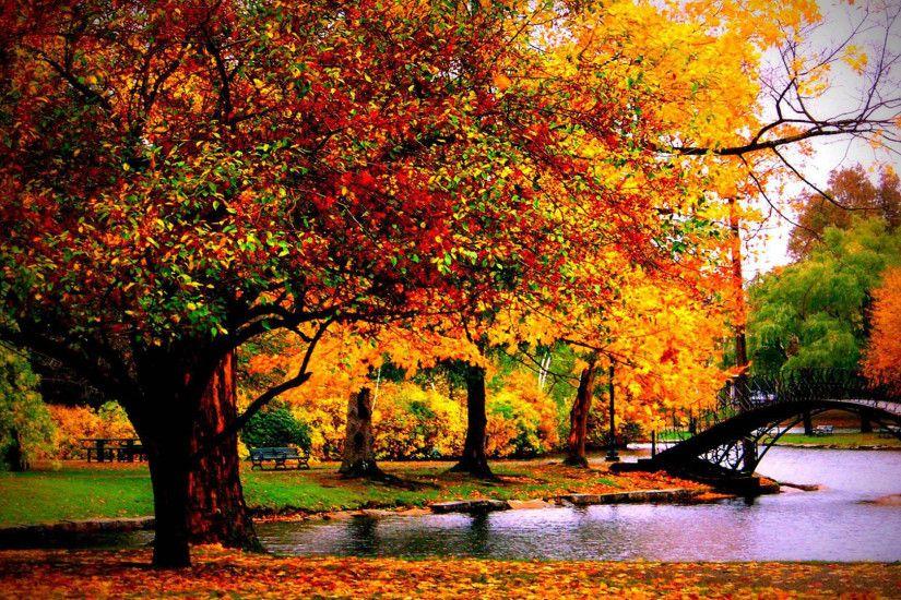 1280x800 Fall Hd Wallpaper Scenic Wallpaper Backgrounds 183 ① Wallpapertag