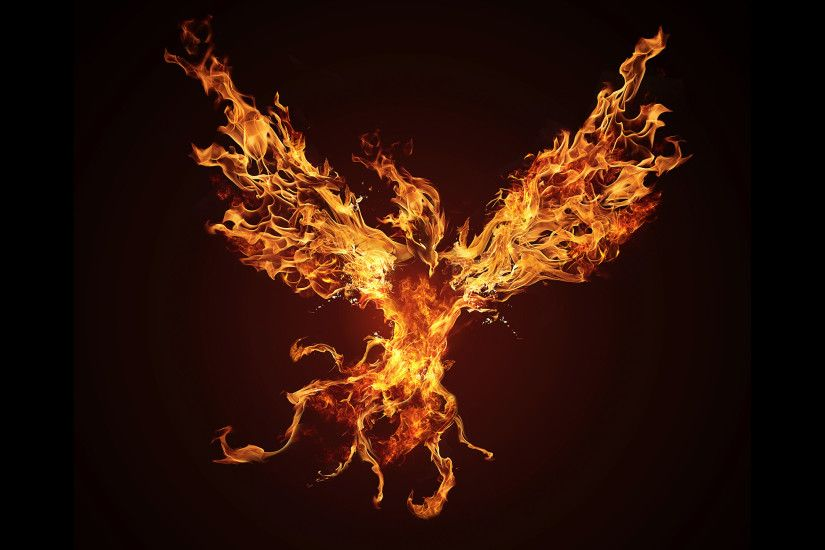 Philadelphia Eagles Wallpaper Hd Phoenix Bird Wallpapers 183 ① Wallpapertag