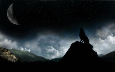 Dark Moon Wolf Moon And Dark Wolf 1680x1050 Download HD Wallpaper WallpaperTip