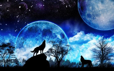 3d Wolf Wallpaper Wolf Howling Blue Moon 1920x1200 Download HD Wallpaper WallpaperTip