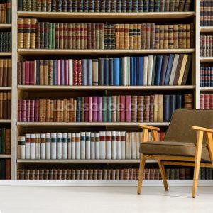 bookcase books mural texture murals wallsauce walls surface