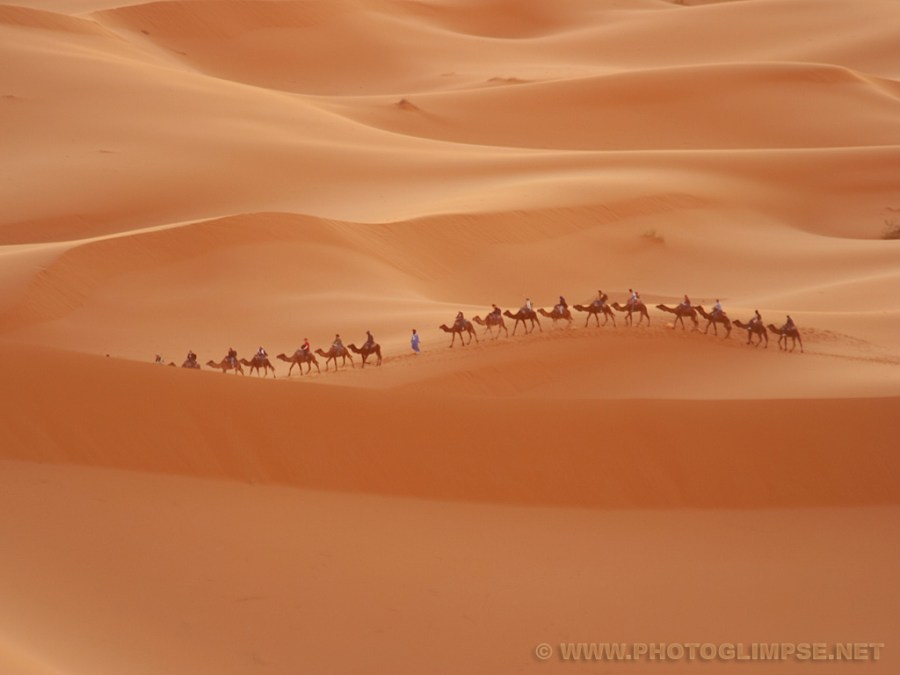 Amazing Desert Nature Pictures Wallpapers