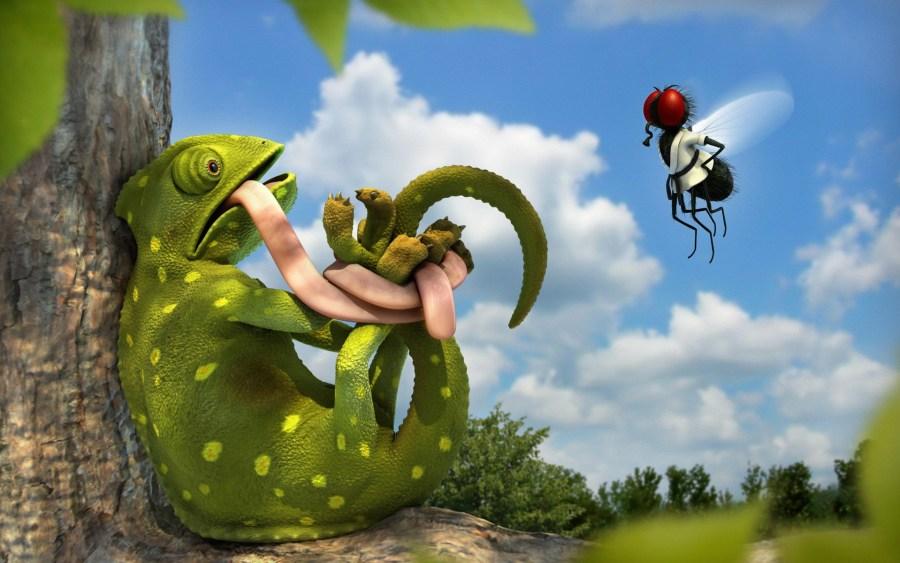 Frog 3D Animal Wallpaper HD Free Download