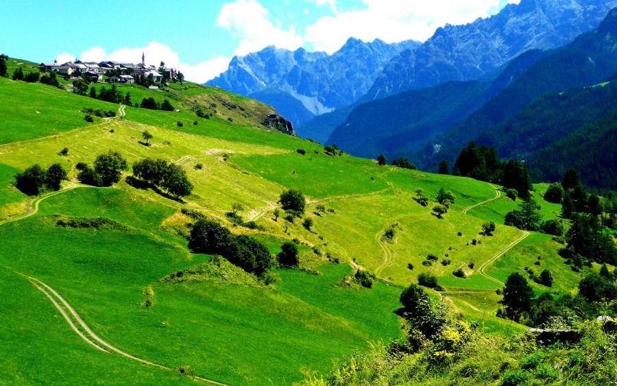 Green Nature Travel Photography Picture Image HD Wallpaper
