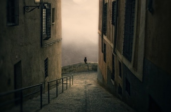Amazing Alley Fine Art Picture Image HD Wallpaper Sharing Free