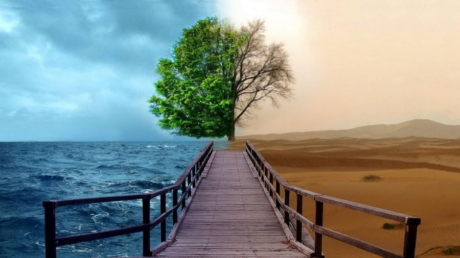 Digital Art Nature Scene