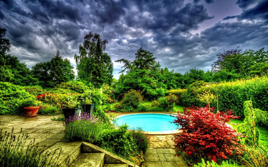 Garden before the storm