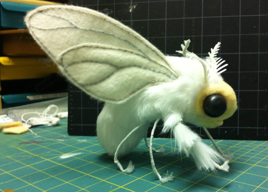 Venezuelan Poodle Moth HD Wallpaper by Wallsev.com