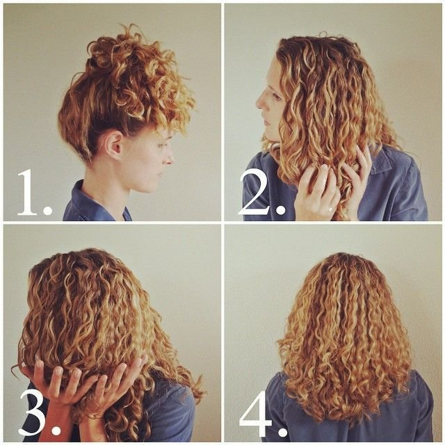 New Best 25 High Curly Ponytail Ideas On Pinterest Curly Ideas With Pictures