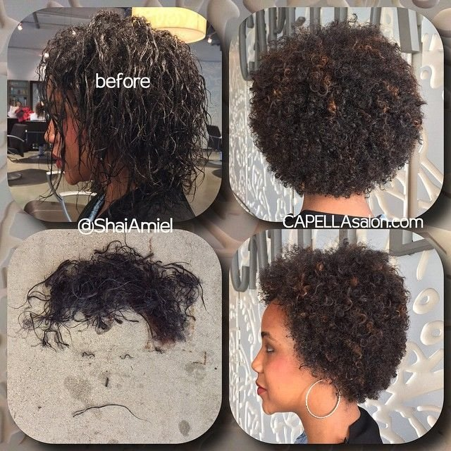 New The Curl Doctor Aka Shai Amiel Says Good Bye To Heat Ideas With Pictures