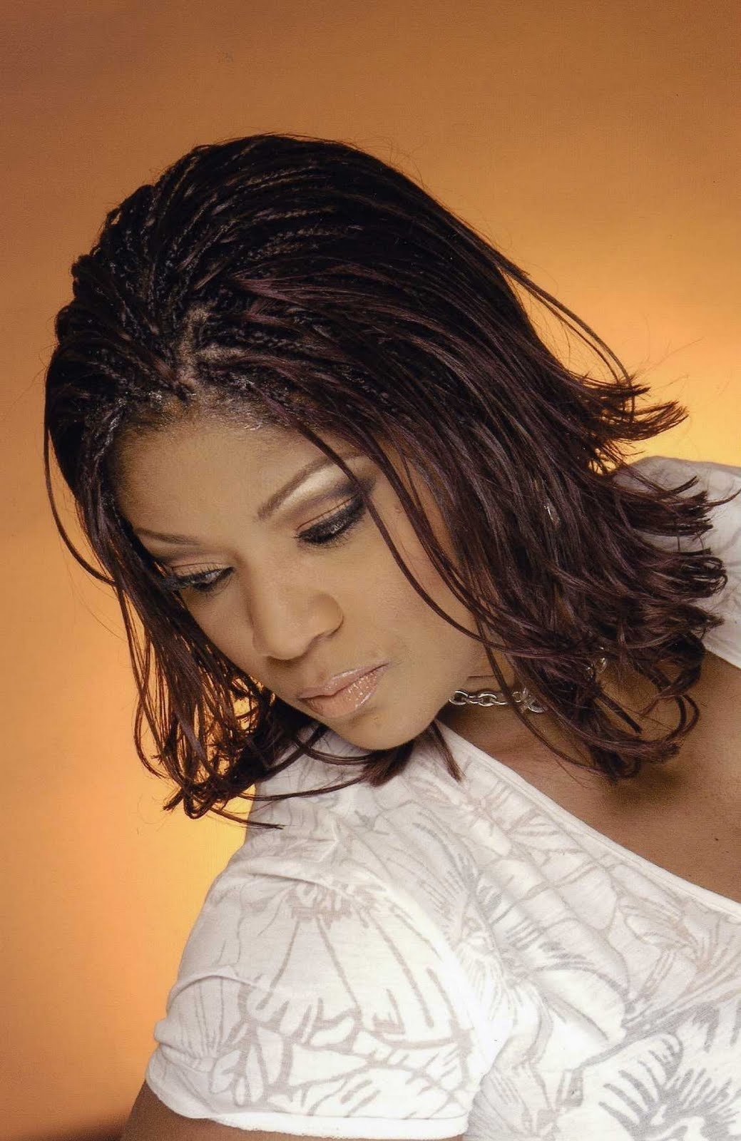 New Style Hot Photos Black Braided Hairstyles 2011 Ideas With Pictures