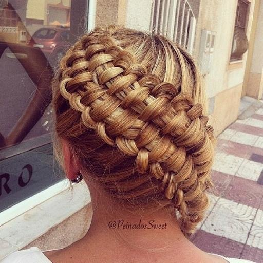 New Zipper Braid Hairstyles How To Ideas With Pictures