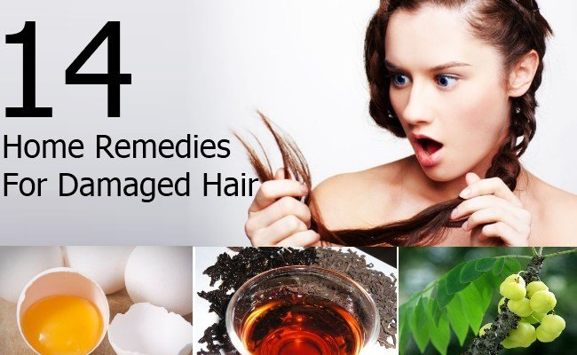 New Top 14 Out Of The Box Home Remedies For Damaged Hair Ideas With Pictures