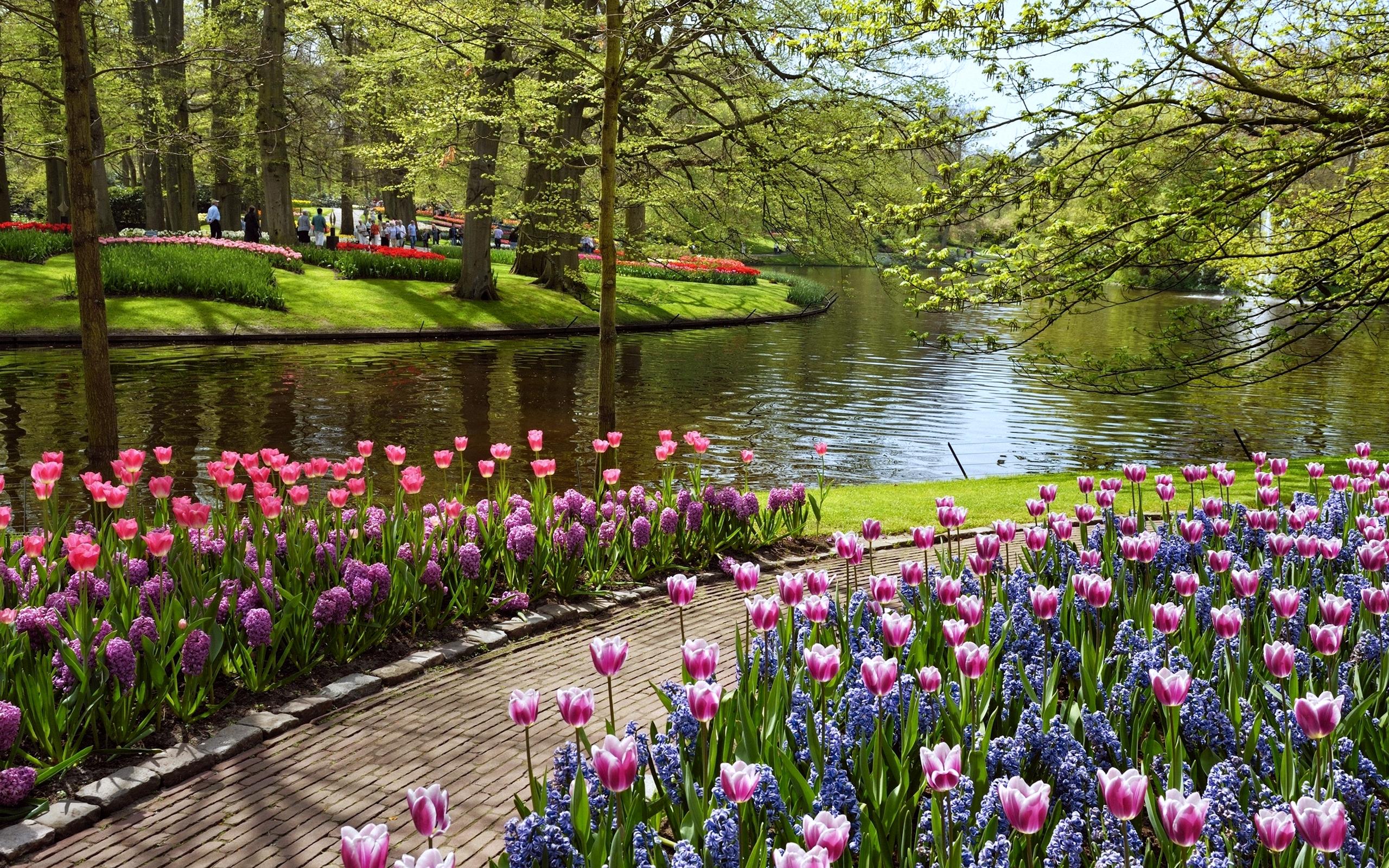 Beautiful Summer Garden Wallpapers HD  Desktop and Mobile